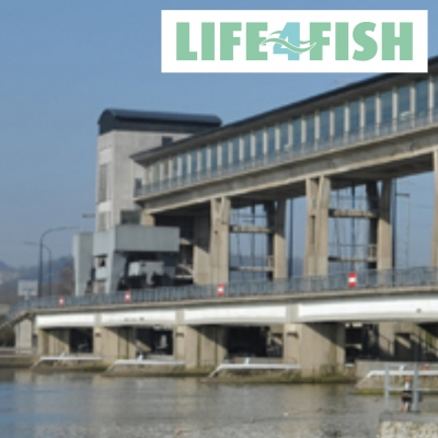 LIFE4FISH: Tracking Eels & Salmons at 6 Hydropower Plants (2017-06-26)
